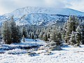 Yosemite High Country Snow 2015 (30580334771).jpg