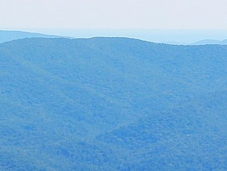 Young Lick - Young Lick viewed from Brasstown Bald