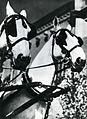 Yva Pferde c1932.jpg