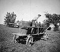 """""""Bendimač"""" tlači grozdje v vrni na vozu, Slap 1958 (cropped) 2.jpg"""