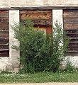 """Closed"" Roscoe, Nebraska 7-24-13d (10784102375).jpg"