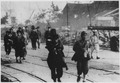 (Survivors moving along the road after the atomic bombing of Nagasaki, Japan.) - NARA - 558581.tif