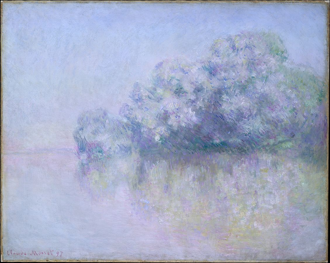 Image result for monet metropolitan museum of art