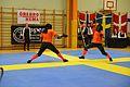 Örebro Open 2015 59.jpg