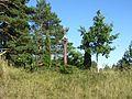 Šimonių sen., Lithuania - panoramio (23).jpg