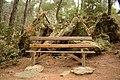 Αισθητικό Δάσος Καισαριανής 7.jpg
