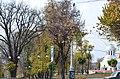 Біогрупа по вулиці Соборній, 2 у Кам'янець-Подільському. Фото 4.jpg