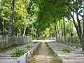 Воинское кладбище, где похоронено 92 советских воина, погибших в боях с немецко-фашистскими захватчиками 4.jpg