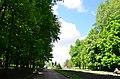 """Дендропарк """"Подолье"""" город Хмельницкий. Фото 2.jpg"""