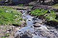 Дисанска Река низ Долни Дисан.JPG