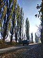 Дорога на с. Буйволівці, фото 5.jpg