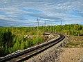 Железнодорожный разъезд Бестужево 1709111.jpg
