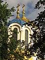 Купола Володимирського собору. Середина червня 2017.jpg
