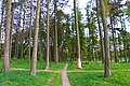 Парк-пам'ятка садово-паркового мистецтва П'ятничанський парк.jpg
