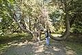 Парк «Дендрарий» с садовопарковой скульптурой и архитектурными сооружениями малых форм 05.jpg