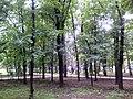 Петровский парк 2.jpg