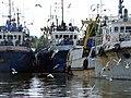 Рыбаки пришли с уловом. Fishermens send with catch. - panoramio.jpg