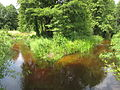 Річка Таль.jpg