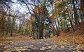 Стрийський парк, осінь 05.jpg