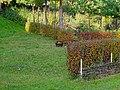 Цветочный горшок в декоративном оформлении участка.jpg