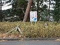 いろいろ禁止 - panoramio.jpg