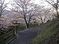 うつぶな公園 - panoramio (8).jpg