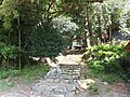 八幡神社 - panoramio (54).jpg