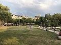 台北市文山區興隆公園-園內大草坪1.jpg