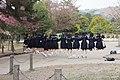 奈良 記念写真 (14006272035).jpg