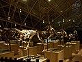 恐龙部队1 - panoramio.jpg