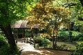 東高根森林公園 - panoramio (14).jpg
