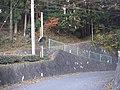 柳島 坂本カーブ - panoramio.jpg