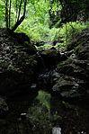 白岩の滝 - panoramio (20).jpg
