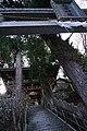 秋葉神社 - panoramio (18).jpg