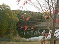 貯水池の紅葉 Oshimizu - panoramio.jpg
