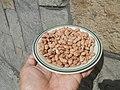 0682Pinto bean textures 03.jpg