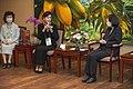 11.02 總統接見「世界華人工商婦女企管協會訪問團」 (50557665487).jpg