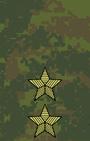 Погон к полевому обмундированию генерал-лейтенанта