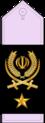18- IRIADF-BG.png