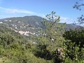 19014 Framura, Province of La Spezia, Italy - panoramio (22).jpg