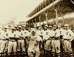 1908 Chicago Cubs.jpg