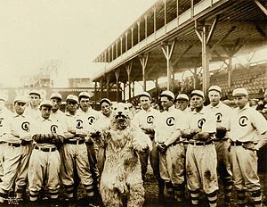 1908 Chicago Cubs season - Image: 1908 Chicago Cubs