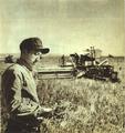 1952-11 大豆丰收1952年.png