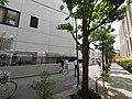 1 Chome Kanda Surugadai, Chiyoda-ku, Tōkyō-to 101-0062, Japan - panoramio (24).jpg