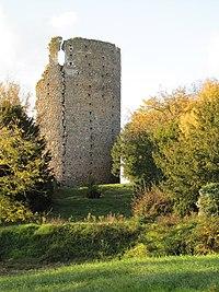 1er nov2011 ruine du château de Fréteval.jpg