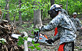 1st Battalion chops down trees during AT 110915-A--545.jpg