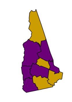 2008 results of the Democratic primary in New Hampshire.png