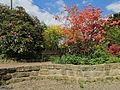 2012-05-15 Rhododendronpark Rathen 8.JPG