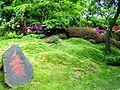2012 kveten botanicka zahrada 050.JPG