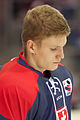 20150207 1757 Ice Hockey AUT SVK 9506.jpg